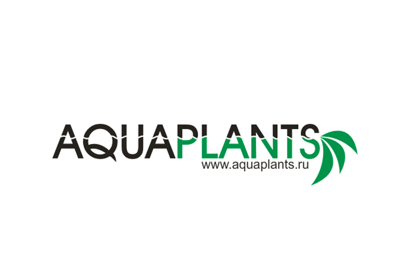 Creation of a logo of community of aqua plants